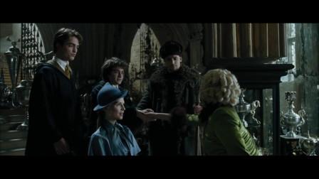 丽塔把哈利波特,拉进扫把间采访,乱七八糟的胡写一通