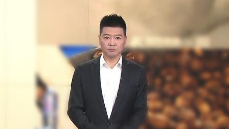 两男子打空气拳 无招胜有招 每日新闻报 20191014 高清版