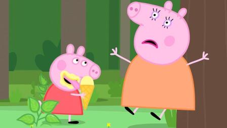 超感动!小猪佩奇为何如此开心?她给猪奶奶准备什么惊喜?儿童趣味游戏玩具故事
