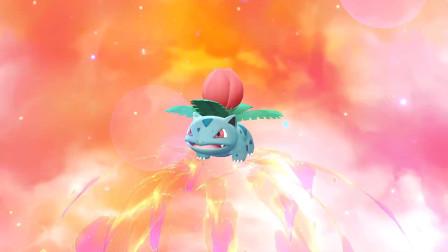 精灵宝可梦let's go! 皮卡丘20:妙蛙种子进化妙蛙草