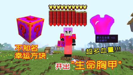 超级幸运方块95:全新的未知幸运方块,随便爆一件装备,都能加几百点生命!