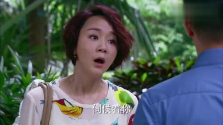 爱情碟中谍:儿媳本就很伤心了,不料丁博反倒说起她了!