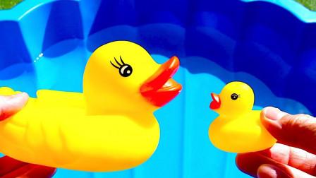 卡通海洋动物玩具们的水池之旅