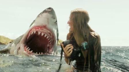 美女到海边冲浪,遭到一头鲨鱼袭击,她徒手与其展开搏斗!