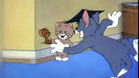 猫和老鼠:小猫惹怒了汤姆,汤姆让他老实点,杰瑞突然来捣乱