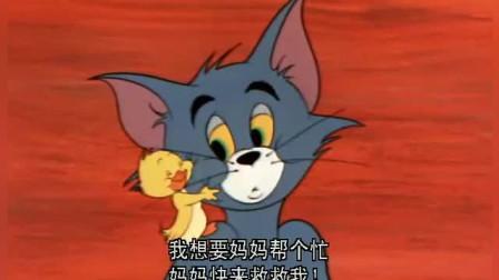 猫和老鼠:小鸭子太单纯,认了汤姆猫当妈妈,可妈妈把你当烤鸭啊
