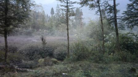 川西高原自驾游遭遇塌方
