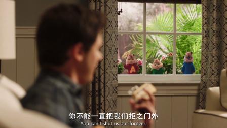 鼠来宝4:花栗鼠们太惨了,竟被来家里住的少年赶出门,叫人心疼