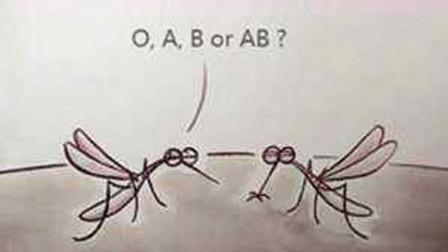 有些人总被蚊子咬,真的是因为血型吗?其实更吸引蚊子的是这些