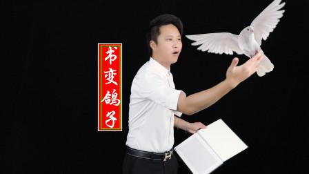 魔术表演:一本书就能变出鸽子出来,鸽子藏哪里呢?太不可思议了