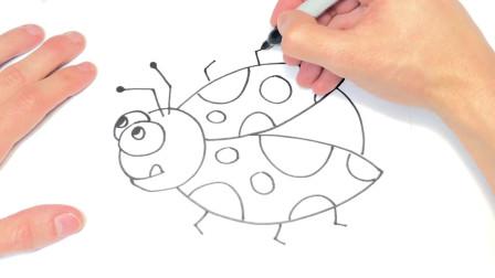 儿童简笔画;如何绘制瓢虫一步一步瓢虫绘图