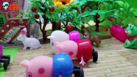 《小猪佩奇》小故事,一起来爬行比赛,猜一猜,谁爬得最快呢?