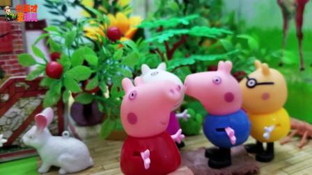 《小猪佩奇》小故事,哇,佩奇是大孩子了,佩奇真的长大啦!