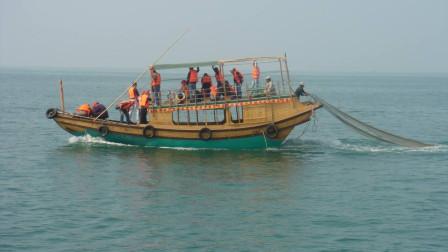 市场上不重样的海鲜从哪来?除了渔民之外,这群人功劳也不小