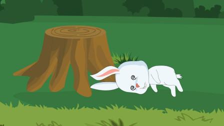 《守株待兔》中兔子为什么会撞到树桩上?原因笑死个人