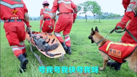 """一条有网红气质的搜救犬,原以为是一条高贵冷艳的搜救犬犬,谁知是只""""话痨""""?梦想迎娶白富美、走上""""狗生巅峰""""?"""