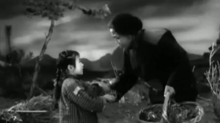 老电影《苦菜花》插曲《苦菜花开》著名歌唱家王音璇演唱