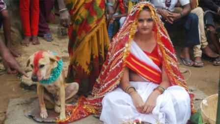 印度最奇葩婚礼,16岁女孩竟然嫁给它,看完刷新三观
