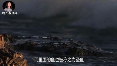 西藏一水库里拥有8亿多斤鱼,为啥没人敢来此打捞?看完懂了