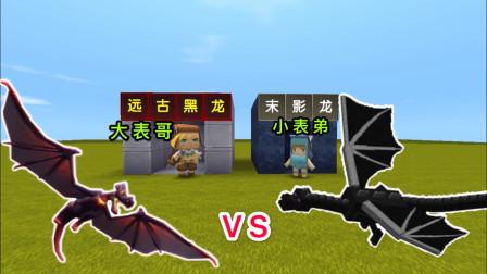 """迷你世界:小表弟是""""末影龙"""",我变身成""""远古黑龙"""",跟他决斗"""