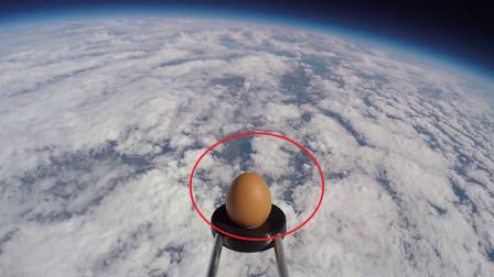 老外把鸡蛋送到太空中,落地后鸡蛋的蛋清竟然不见了!它去哪了?
