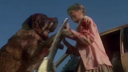 狂犬惊魂:妇女刚下车想逃生,不料疯狗就在背后,这下惨了!