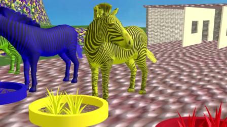 趣味益智动画片 斑马吃草变成彩色斑马