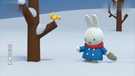 米菲大冒险:米菲想帮小鸟取暖,用面包引小鸟去自己家,真聪明!