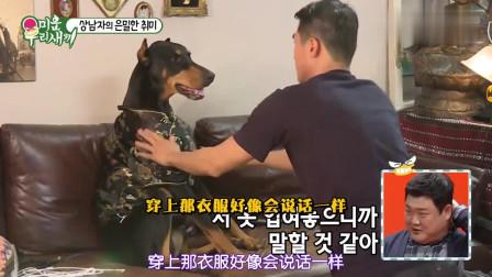 我家的熊孩子:韩国明星给狗狗打扮拍照,你想过狗狗的感受吗?
