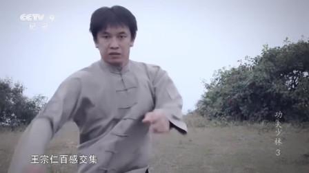 武术高手王宗仁,检验日本徒弟功夫,一招一式真的太震撼了