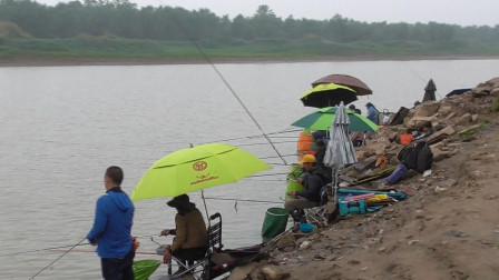 这河里鱼真的多!坐满了钓友,看大家有多少渔获