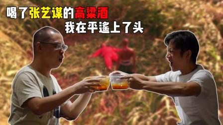 1500人4D观看日本恐怖大师新作《犬鸣村》,吓得脸色苍白