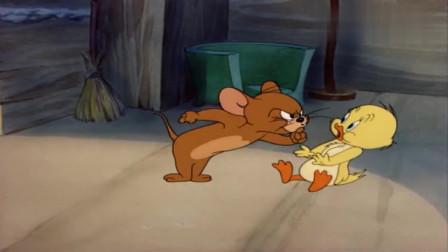 猫和老鼠:小鸭被汤姆追捕,逃到杰瑞家里求救,杰瑞帮他教训汤姆