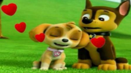 汪汪队立大功狗狗巡逻队露玛和雪犬救援遇到怪异动物怎么办?