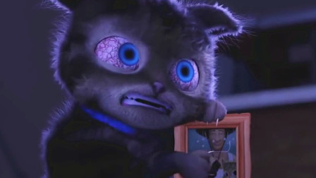 误食咖啡的宠物猫咪,破坏力堪比绿巨人,出差前切记藏好咖啡!