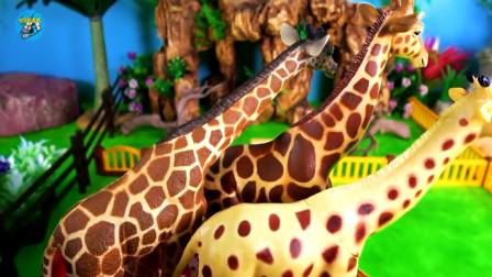 野生动物玩具建立儿童小动物园,长颈鹿河马犀牛斑马大象豹子,儿童玩具亲子互动