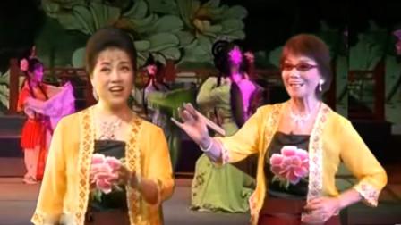 庐剧《秦雪梅观画》,丁玉兰戴眼镜、穿便装,舞台组合优美