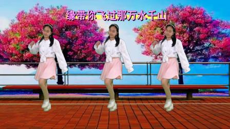 网红步子舞32步《甜甜甜》DJ何鹏版阿裙广场舞