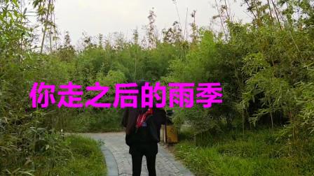 经典老歌:《你走之后的雨季》声色动人,情细腻,太有诗意了