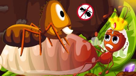 奇妙昆虫 冒险家奇奇带你寻找神秘的蚁后  宝宝巴士游戏