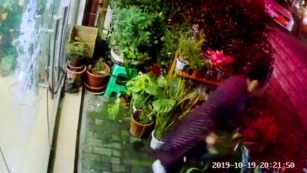 【重庆】监拍:女子十秒内盗走花店门口一盆兰草
