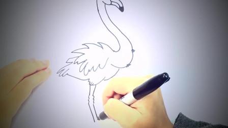 儿童简笔画:如何画火烈鸟_火烈鸟易画教程 简笔画教学视频