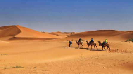 两点之间直线最短,为什么沙漠迷路后不能走直线?今天算长见识了