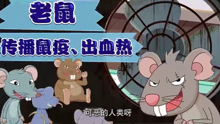 可可小爱:这帮老鼠真可怕,躲在暗处去害人,真是太阴险