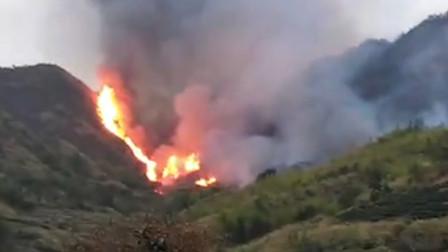 村民用火不慎引发森林火灾被刑拘 超800人扑救
