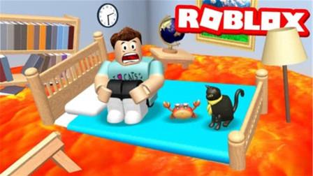 Roblox岩浆模拟器 站在房子的顶上 你们都赶快过来