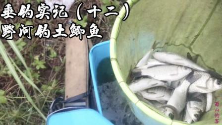 探钓野河,小白条闹窝饵料到不了底,换钓半米深草洞土鲫鱼连竿!