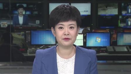 第一时间 辽宁卫视 2019 终身职业技能培训  看看有没有适合你的