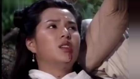 神雕侠侣:赵志敬敢侮辱小龙女,杨过心疼姑姑要杀了他们!