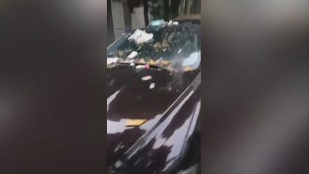 """江苏盐城一捷豹轿车停车挡住垃圾池 被当成""""垃圾桶"""" 扔满垃圾"""